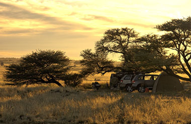 Simba 4x4 Tours and Safaris | Simba 4x4 Tours and Safaris