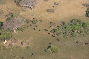 Botswana-Zim-Namibia October 2014_14
